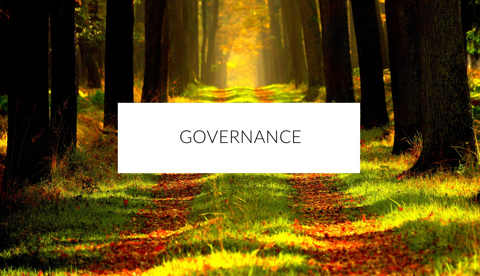 Governance at Dara Community Living
